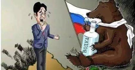 自作聪明!日本不知收敛激怒俄罗斯,安倍想见普京恐怕难了! ... 伊戈尔,俄方,日俄,自作聪明,日本 第2张图片