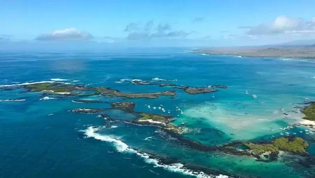 探索南美海洋保护区,潜下水的那一刻,才知道什么叫做海底世界 ... 探索,南美,海洋,海洋保护,海洋保护区 第8张图片