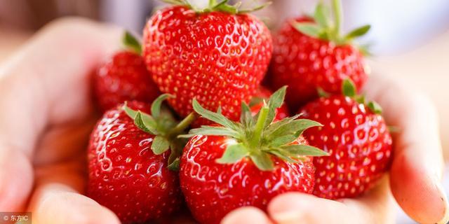 90后说走就走,去澳大利亚草莓园打工赚人生第一桶金 遥远,简单,一天下来,澳大利亚,草莓园 第1张图片