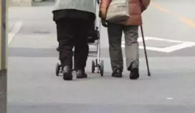 600位中国人亲身实验:每周吃蘑菇,或可缓解老年痴呆 我不认识你。,亲身,实验,每周 第8张图片