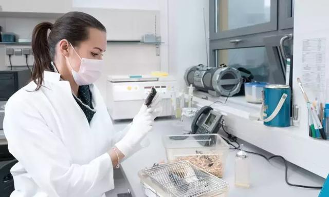 600位中国人亲身实验:每周吃蘑菇,或可缓解老年痴呆 我不认识你。,亲身,实验,每周 第9张图片