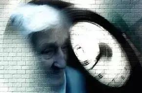 600位中国人亲身实验:每周吃蘑菇,或可缓解老年痴呆 我不认识你。,亲身,实验,每周 第15张图片