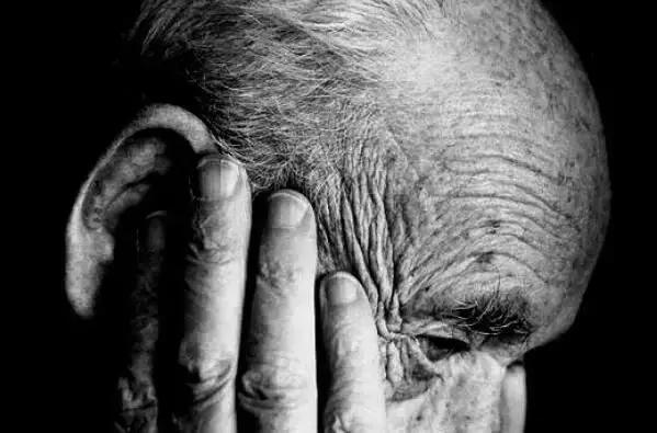 600位中国人亲身实验:每周吃蘑菇,或可缓解老年痴呆 我不认识你。,亲身,实验,每周 第45张图片