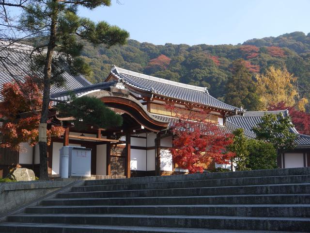 如何移民到日本?日本移民的渠道和方式 如何,移民,日本,渠道,方式 第3张图片