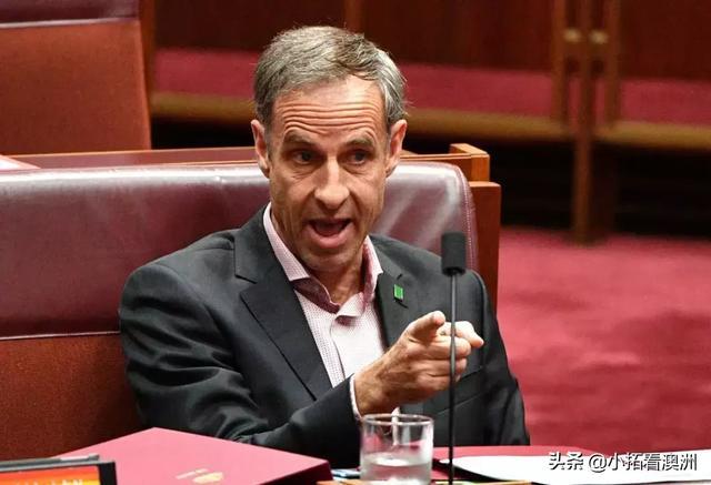 绝望!澳洲官方证实,想和家人在澳洲团聚,你得等56年! 联邦政府,绝望,澳洲,官方证实,家人 第6张图片