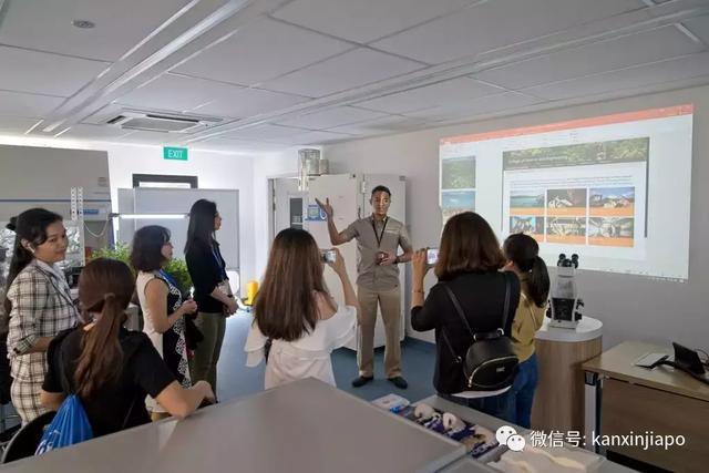 留学新加坡,硬核的择校标准是这个,没有之一! 留学,新加坡,硬核,核的,择校 第12张图片