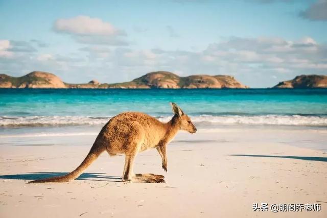 留学你会选哪个国家?英、美、澳3国留学利弊分析 留学,哪个,国家,利弊,分析 第5张图片