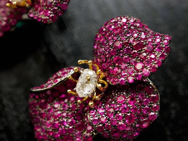 买珠宝,找单星宏巴西珠宝缘就够了! 珠宝,单星,巴西,够了,猫眼 第23张图片