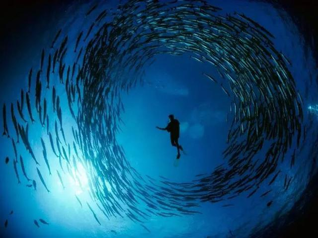 马来西亚最适合潜水的6个地方,少去一个,人生都不算圆满! ... 马来西亚,西亚,适合,潜水,个地方 第6张图片
