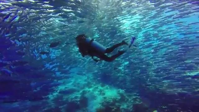 马来西亚最适合潜水的6个地方,少去一个,人生都不算圆满! ... 马来西亚,西亚,适合,潜水,个地方 第9张图片