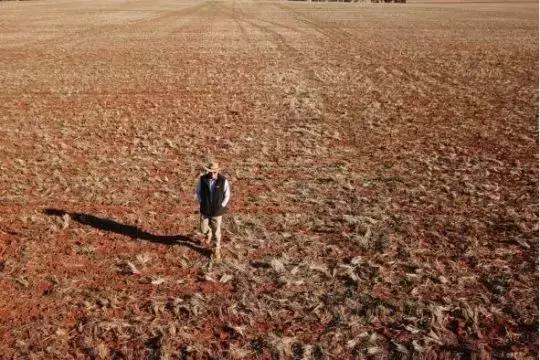 最近,澳洲面临巨大危机!竟然养不起自己了? 最近,澳洲,面临,巨大,大危机 第11张图片