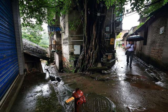 重庆,值得去的12个古镇 重庆,值得,喧嚣,都市,久了 第24张图片
