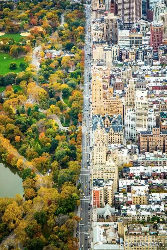 从高空看纽约中央公园,才知道美国城建规划多有远见 高空,纽约,纽约中央公园,中央,中央公园 第1张图片