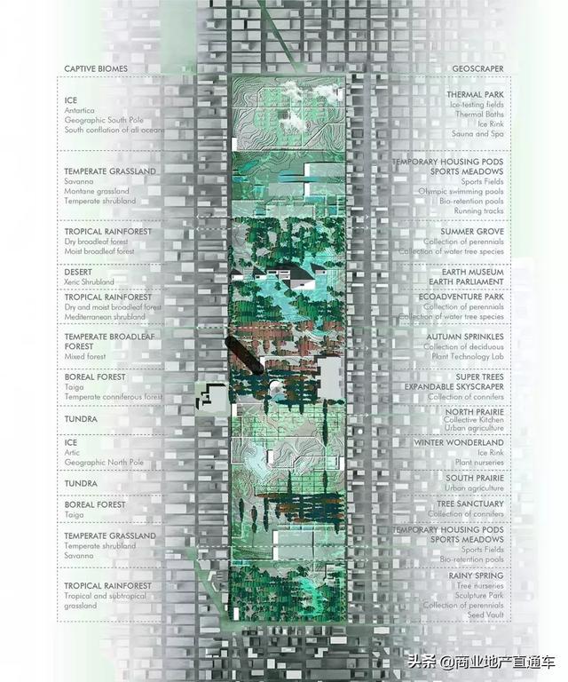 从高空看纽约中央公园,才知道美国城建规划多有远见 高空,纽约,纽约中央公园,中央,中央公园 第31张图片