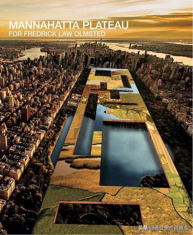 从高空看纽约中央公园,才知道美国城建规划多有远见 高空,纽约,纽约中央公园,中央,中央公园 第30张图片
