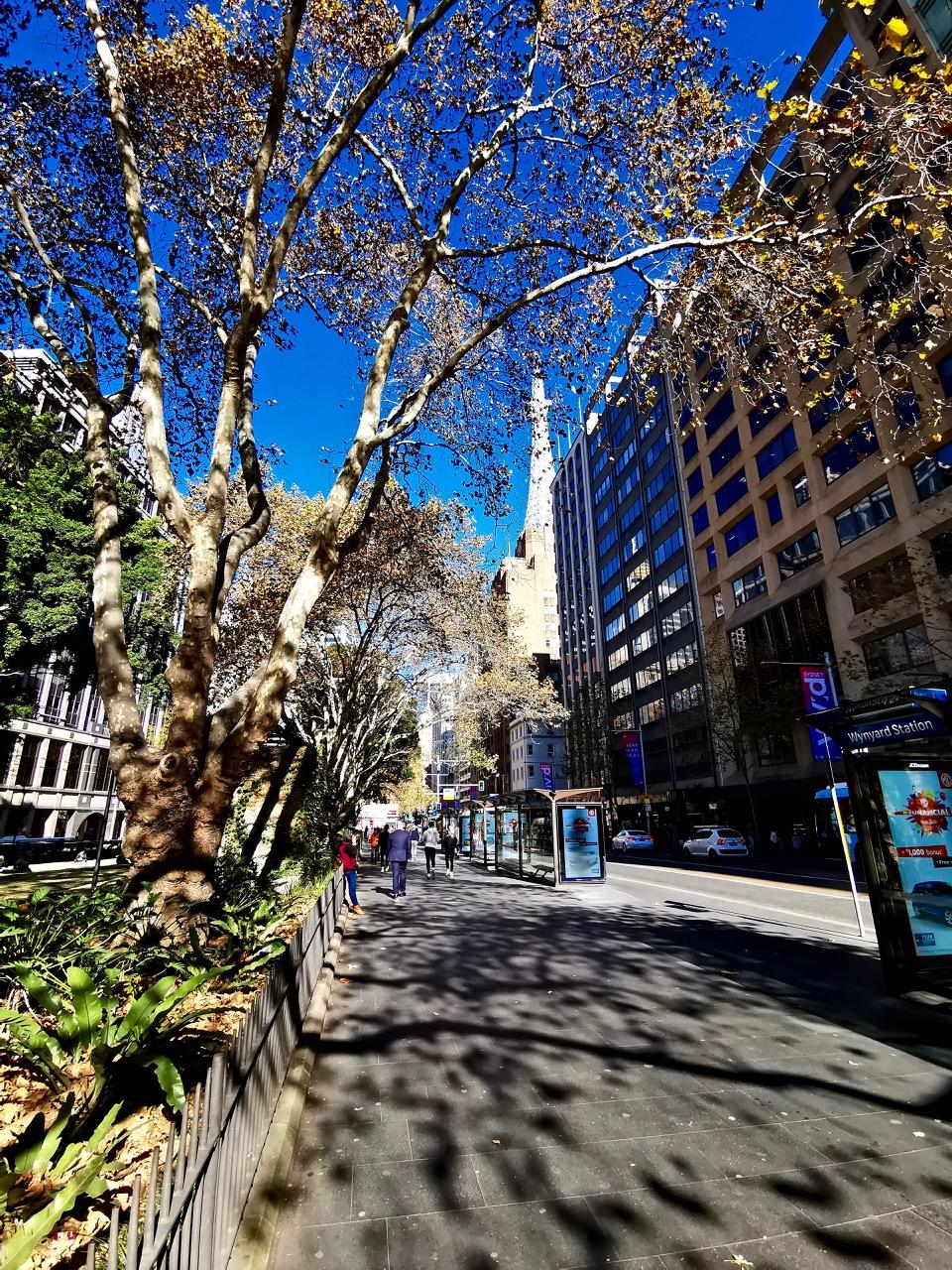 想要躲避北半球酷热的夏天,这时候来悉尼准没错 酷热难耐,别骗我,哭笑不得,想要,躲避 第9张图片
