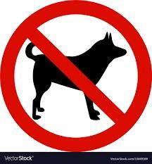 温哥华网友纷纷质疑:除了导盲犬,商场超市允许带大狗进入吗? ... 温哥华,网友,纷纷,质疑,除了 第5张图片