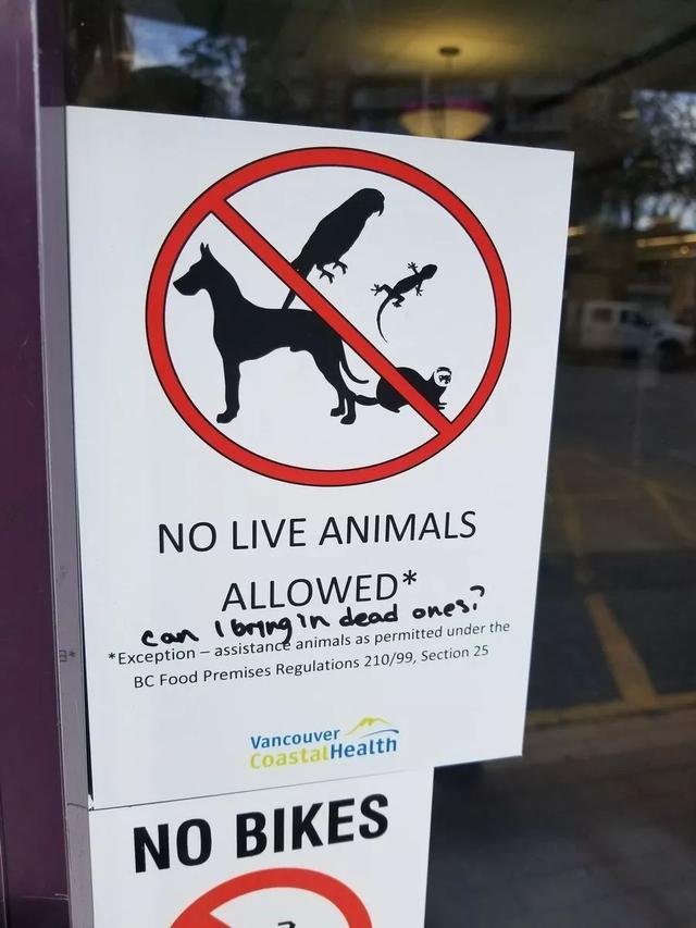 温哥华网友纷纷质疑:除了导盲犬,商场超市允许带大狗进入吗? ... 温哥华,网友,纷纷,质疑,除了 第13张图片