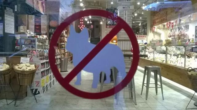 温哥华网友纷纷质疑:除了导盲犬,商场超市允许带大狗进入吗? ... 温哥华,网友,纷纷,质疑,除了 第18张图片