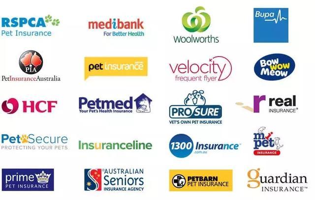 澳洲政府推出新签证,可自动转PR!然而有些人可能不高兴了 承诺,莫里森,自由党,澳洲,政府 第5张图片