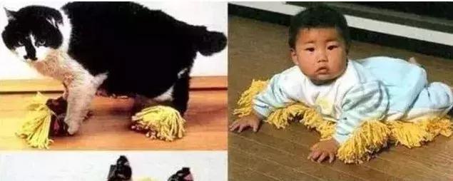 边走边洗内裤,猫额头香水...日本的奇葩发明远不止这些 海外华人资讯,同城,唐人街生活网,华人圈,中国城 第52张图片