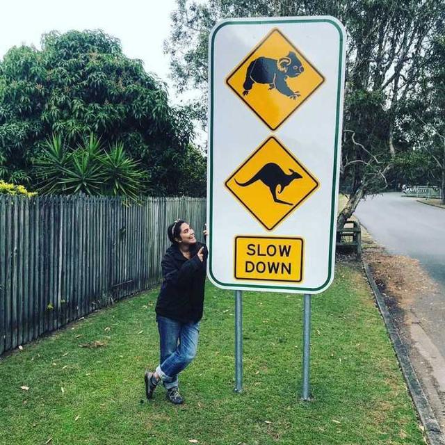 有什么你去了澳洲才知道的事情? 有什么,什么,澳洲,知道,知道的 第4张图片