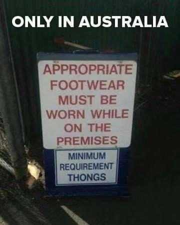 有什么你去了澳洲才知道的事情? 有什么,什么,澳洲,知道,知道的 第5张图片