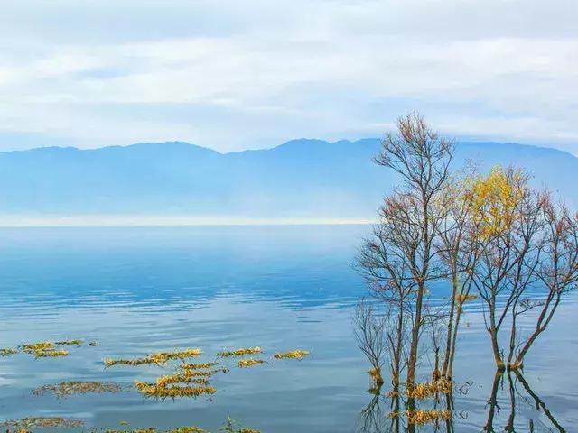 去过那么多次云南,唯独爱上了洱海 不知不觉,苍山洱海,彩云之南,第一站,蓝色的 第3张图片
