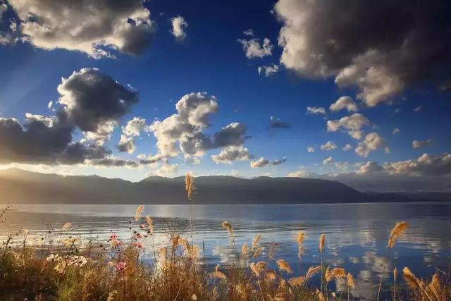 去过那么多次云南,唯独爱上了洱海 不知不觉,苍山洱海,彩云之南,第一站,蓝色的 第2张图片