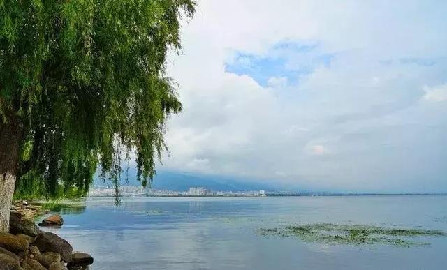 去过那么多次云南,唯独爱上了洱海 不知不觉,苍山洱海,彩云之南,第一站,蓝色的 第4张图片