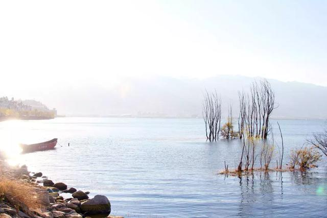 去过那么多次云南,唯独爱上了洱海 不知不觉,苍山洱海,彩云之南,第一站,蓝色的 第5张图片
