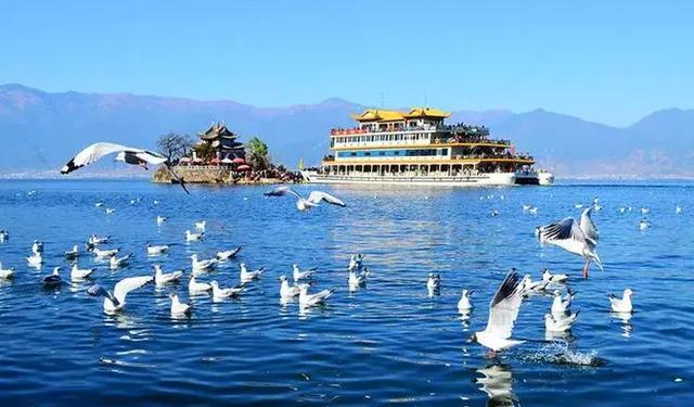 去过那么多次云南,唯独爱上了洱海 不知不觉,苍山洱海,彩云之南,第一站,蓝色的 第12张图片