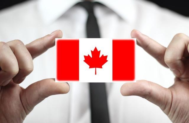 那些人移民加拿大后,都在做些什么工作?就业和收入水平如何? ... 海外华人,加拿大移民,移民加拿大,数据显示,工资水平 第5张图片