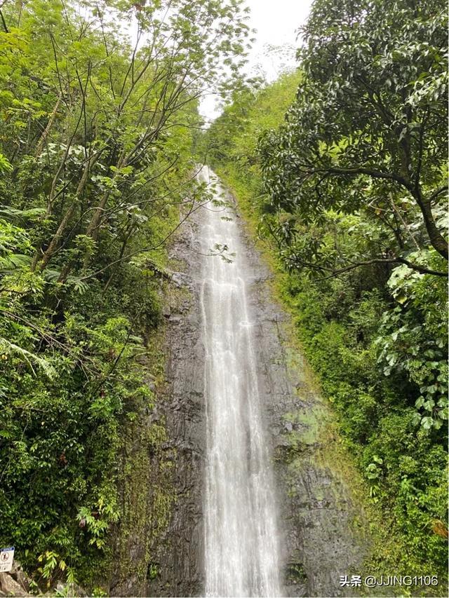 2020你好!夏威夷•欧胡岛DAY3-瀑布•热带雨林与大环岛 热带雨林,什么时候,檀香山,第一站,节假日 第3张图片