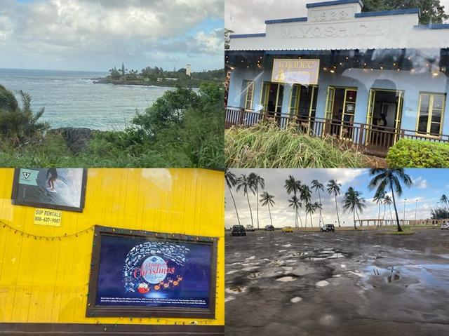 2020你好!夏威夷•欧胡岛DAY3-瀑布•热带雨林与大环岛 热带雨林,什么时候,檀香山,第一站,节假日 第11张图片