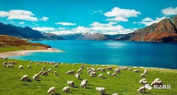 新西兰是如何成为发达国家的 绚丽多彩,生活方式,发达国家,学习环境,变化多端 第4张图片