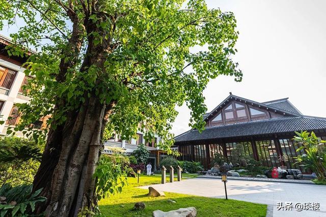 这家现代化酒店,1000平米的大堂,竟是榫卯结构,不用一根钉子 第14张图片
