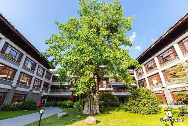 这家现代化酒店,1000平米的大堂,竟是榫卯结构,不用一根钉子 第15张图片
