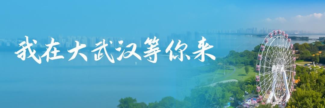 ①大雨全市无渍水②雨游武汉③泰国最大虎园关门 | 本日大武汉 第2张图片