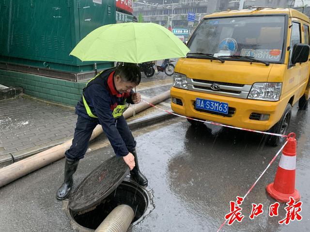 ①大雨全市无渍水②雨游武汉③泰国最大虎园关门 | 本日大武汉 第4张图片