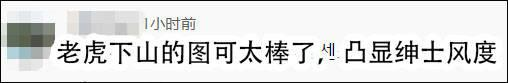 """又杠上了,韩奥运代表团挂""""猛虎""""横幅,日右翼举行""""辱韩""""游行 第10张图片"""