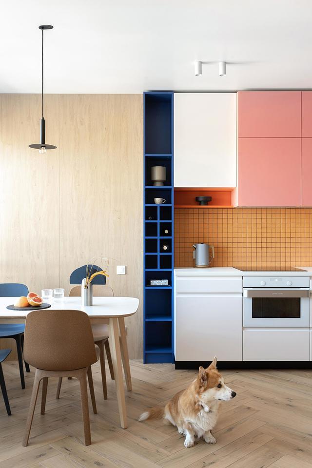 出色!明亮色彩家庭装修案例,欢畅、活跃、朝气勃勃,人见人爱 第2张图片
