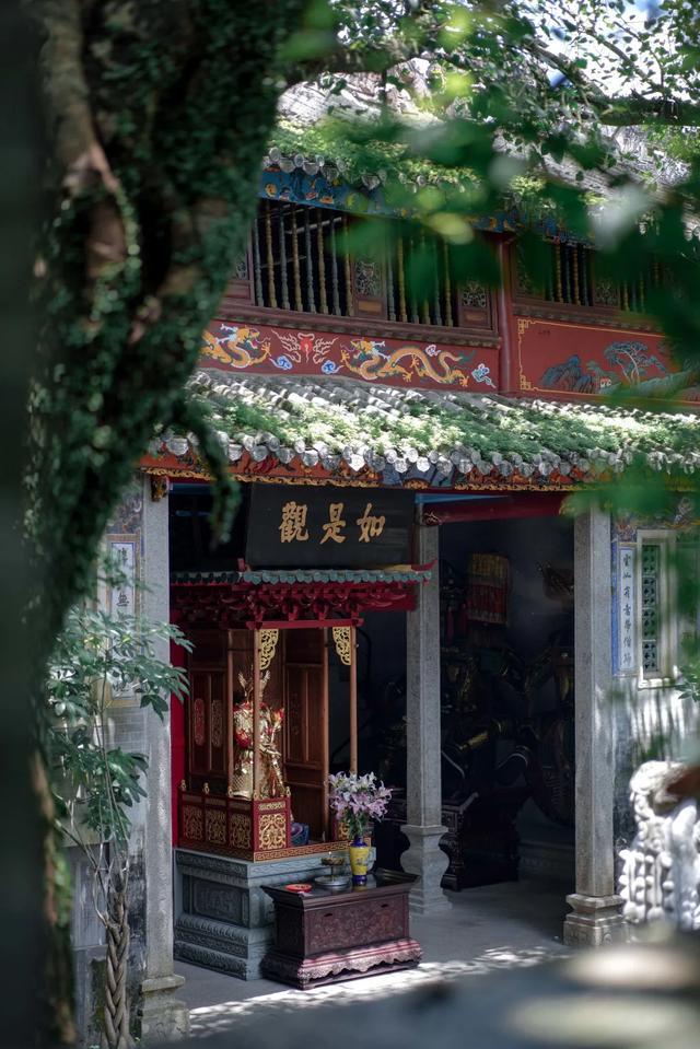 广州周边游丨奥游新兴,于禅意和山林间趣享喜来登 第56张图片