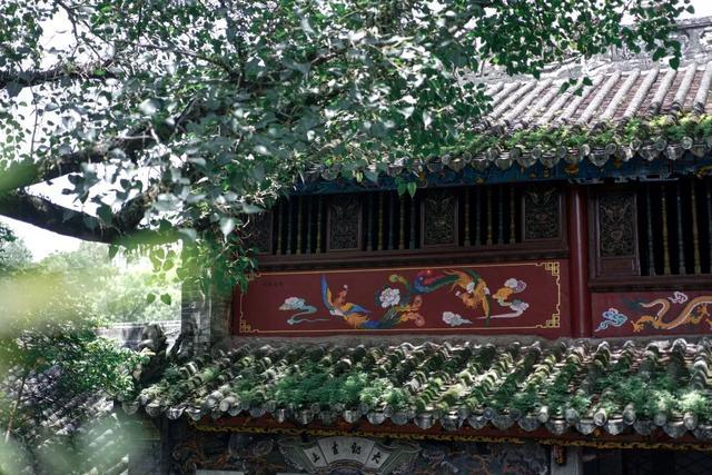广州周边游丨奥游新兴,于禅意和山林间趣享喜来登 第57张图片