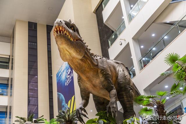 深圳网红亲子乐园!斥资1.5亿的超大室内乐园,嗨玩一成天没题目 第19张图片