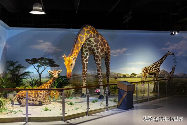深圳网红亲子乐园!斥资1.5亿的超大室内乐园,嗨玩一成天没题目 第65张图片