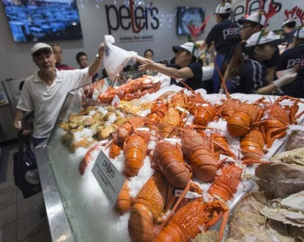 红酒龙虾被盟友填空,澳对华贸易损失还不止这些 第2张图片