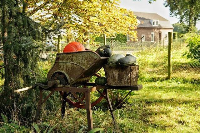 荷兰人的本质真好,在乡下无人售货摊,相信天主有眼,在看着 第5张图片