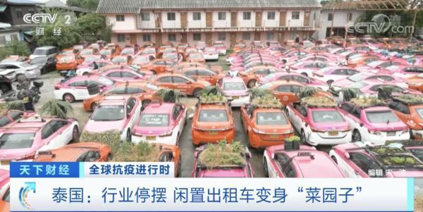 """泰国:大量出租车停运交不起""""份子钱""""车顶变成""""菜园子"""""""