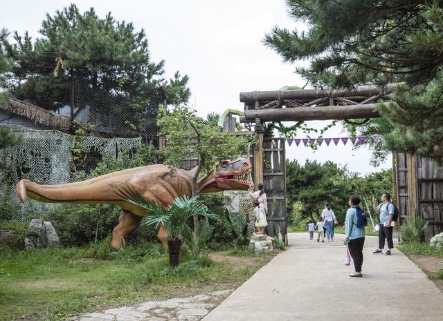 """济南这处奥秘森林里的亲子主题乐园,特点民宿、萌宠乐园、美味小吃,""""十一""""遛娃走起! 第9张图片"""